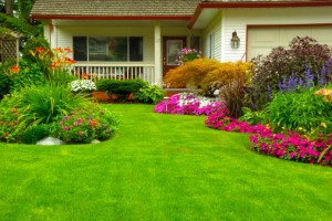 The Landscaping Investment
